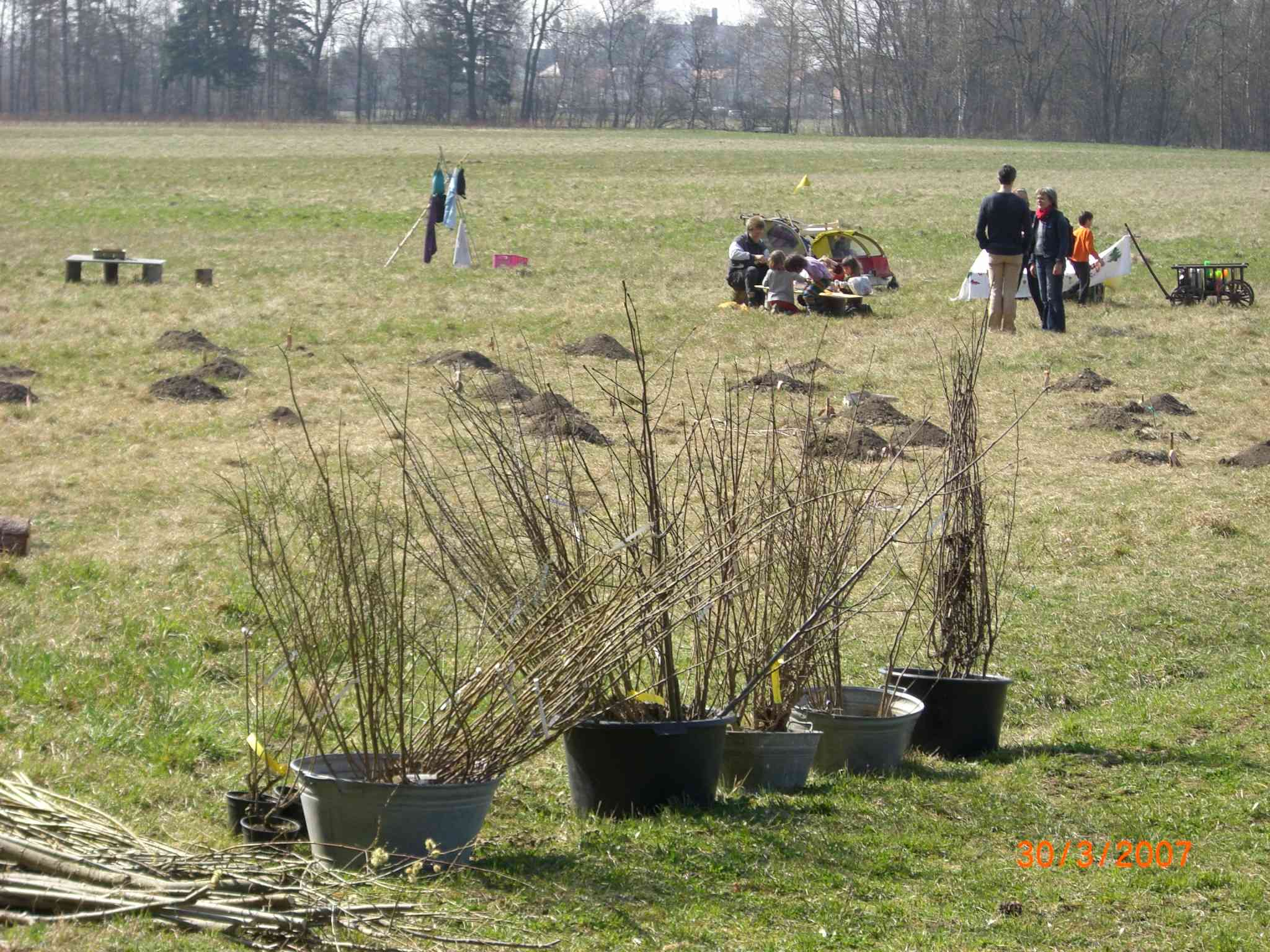 2008_03 Planzung